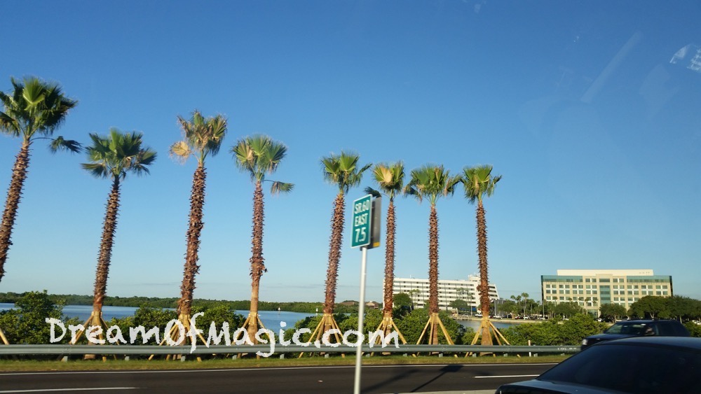 Clearwater 2014-10-28-17-35-03 [SGS5]