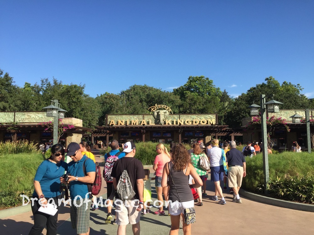Discovery Island 2014-10-22-09-47-49 [iPhone 6]