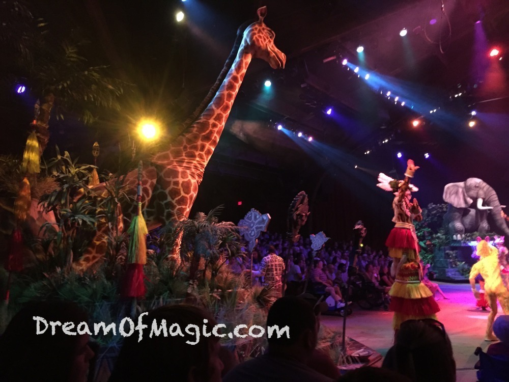 Festival of the Lion King 2014-10-30-13-22-07 [iPhone 6]